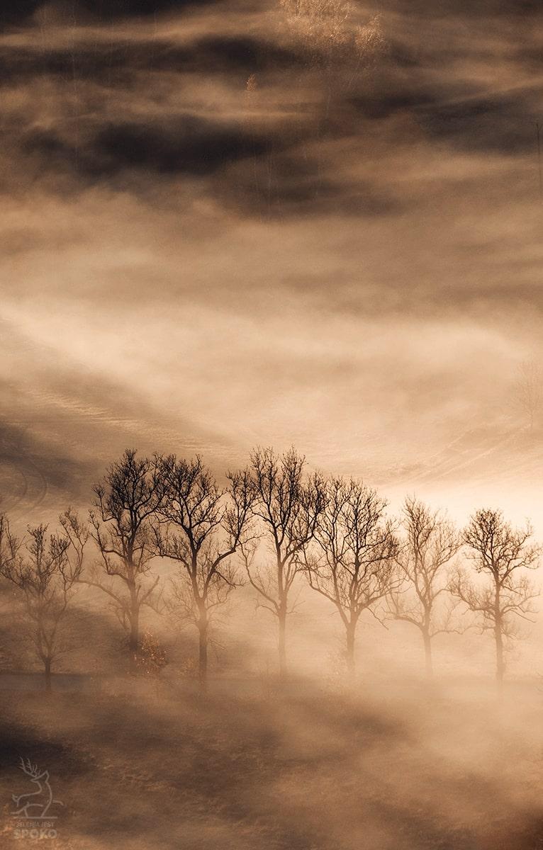 Mgielni Pielgrzymi