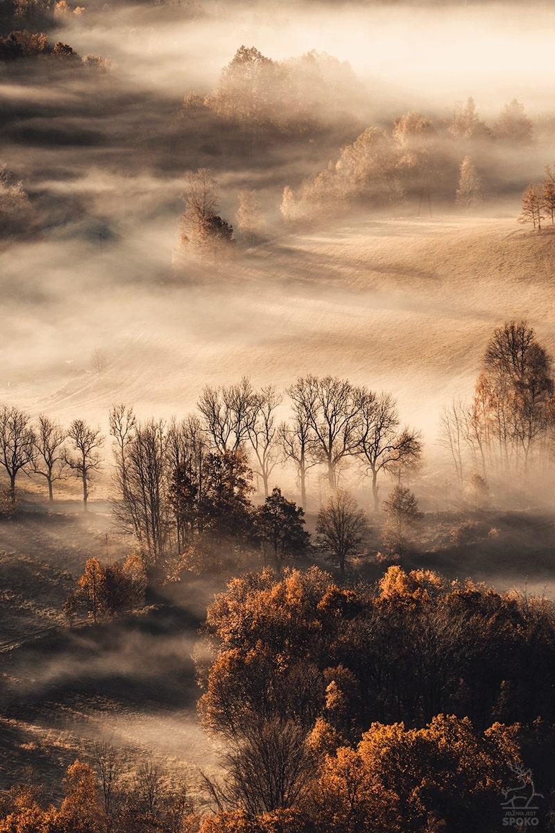 Gdy artystą jest mgła
