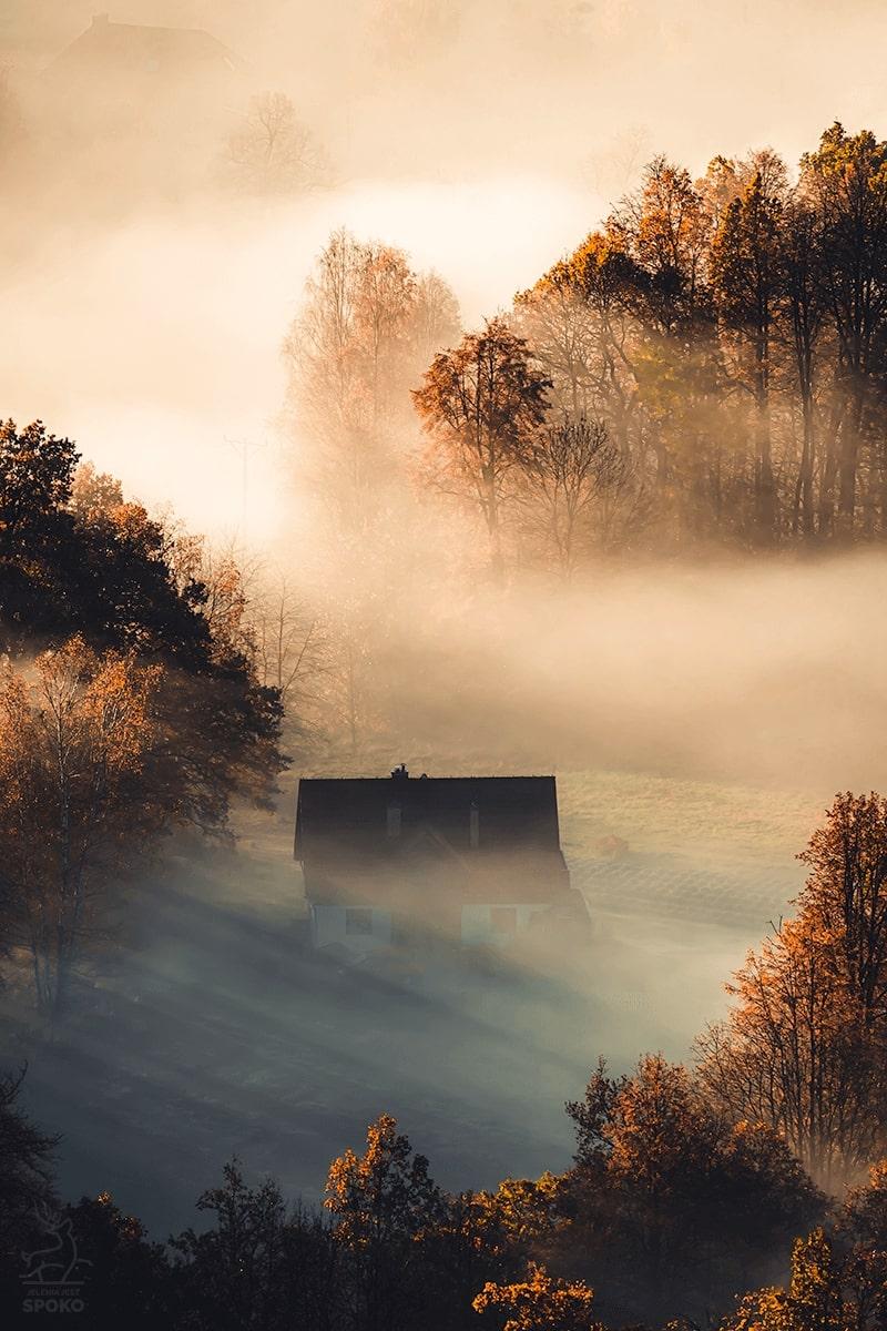 Mieszkając w mgłach