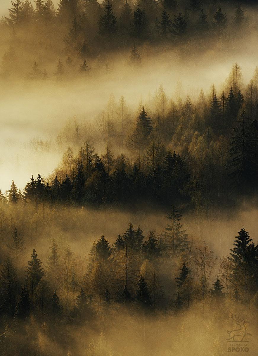 Miedziane mgły